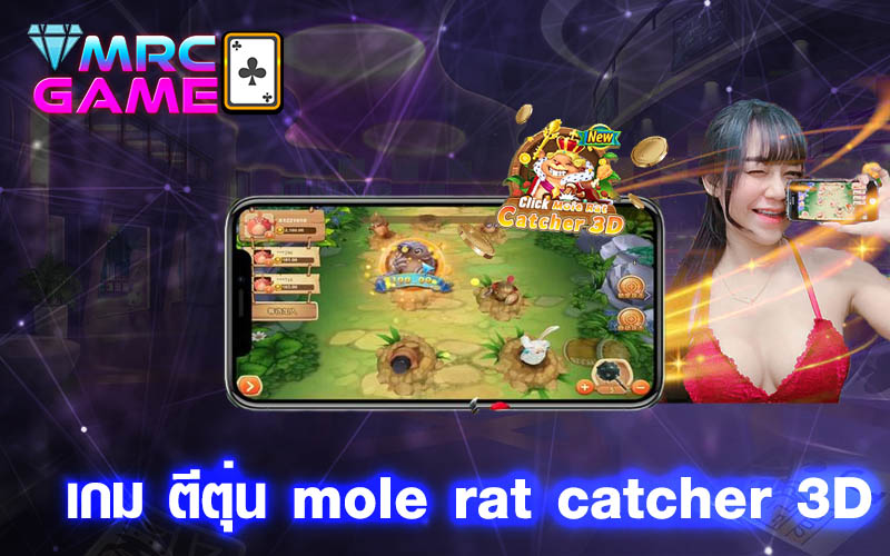 เกม ตีตุ่น mole rat catcher 3D